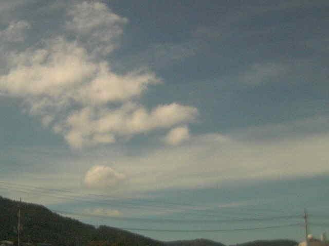 livecamera画像